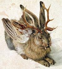 jackalope, wolpertinger, джакалоп, зайцелоп